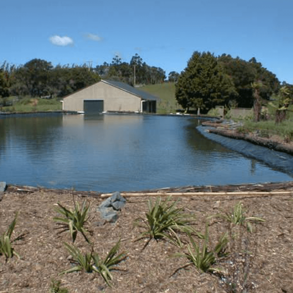 Pond Liner